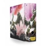 Dragon Shield Slipcase Binder - 'Enimas' Silver