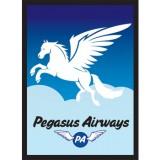 Legion - Art Sleeves - Pegasus Air (50 Sleeves)